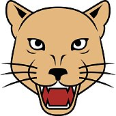 Lioness head vector illustration.