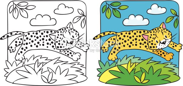 Little Cheetah O Jaguar Libro Para Colorear Arte vectorial | Thinkstock