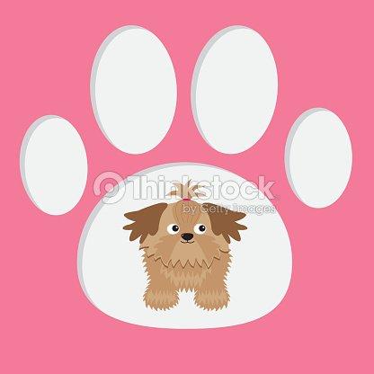 pouco de glamour bronzeado shih tzu cachorro com a pata imprimir