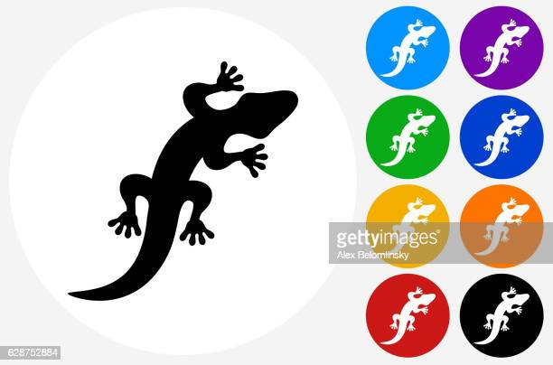 Lizard Icon on Flat Color Circle Buttons