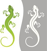 Graphic illustration of lizard in monochrome and color variations