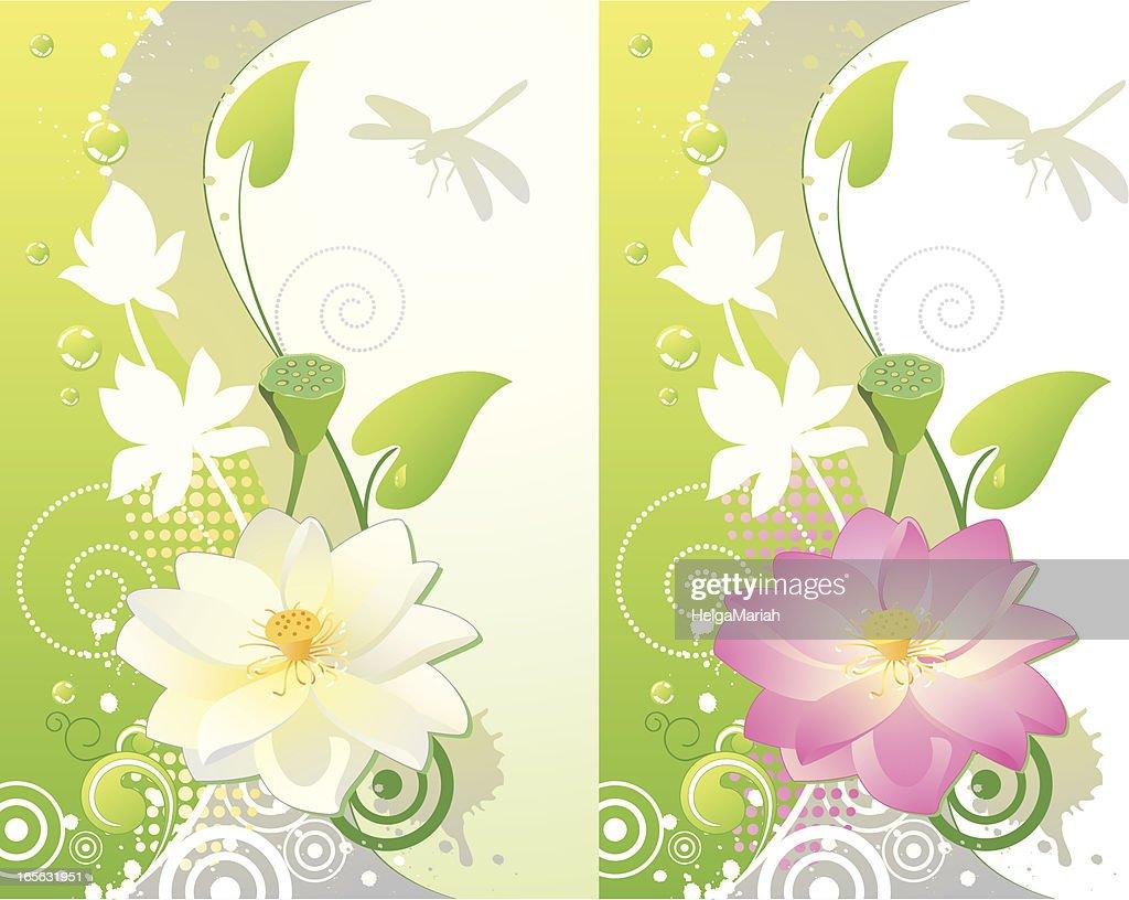 lotus blume vertikale hintergrund vektorgrafik getty images. Black Bedroom Furniture Sets. Home Design Ideas