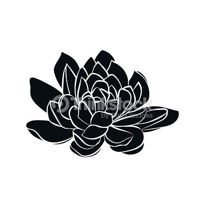 Lotus Flowers Icon Vector Art Thinkstock