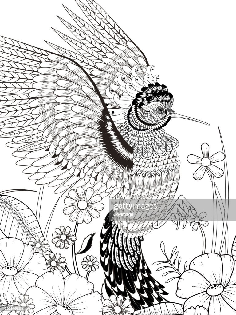 Magnificent Printable Hummingbird Coloring Pages Acirc Easy Coloring ...