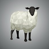 Vector illustration sheep, low poly. Forest animal on white background.