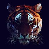 Polygonal tiger face illustration