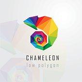 low polygon style abstract multicolored chameleon logo element. Geometric triangular lizard design element