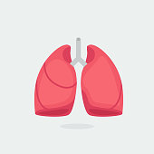 Healthy Lungs vector illustration