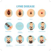 Patients lyme disease and ticks. vector illustration