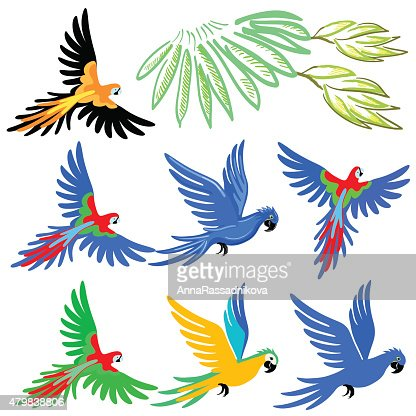 Macaw parrot pattern set : stock vector