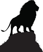 Editable vector silhouette of a male lion standing on a rocky outcrop with lion as a separate object