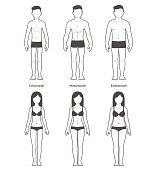 Male and female body types: Ectomorph, Mesomorph and Endomorph. Skinny, muscular and fat bodytypes. Fitness and health illustration.