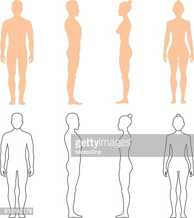 Male and female human vector silhouettes : stock vector