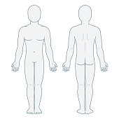 Nude male body front and back view. Blank man body template for medical infographic. Isolated vector illustration.