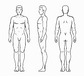 Male body, human design and people health and silhouette muscular, vector illustration