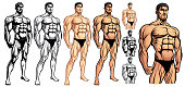 Male Bodybuilder Full Body_EPS 10 Vector