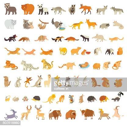 Mammifères du monde. Grand ensemble d'animaux : Clipart vectoriel