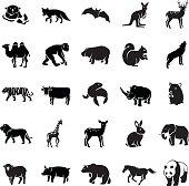 Mammals glyph vector icons