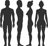 Man and woman vector silhouettes in front and side view. Illustration of body male and female illustration