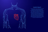 Man torso heart in breast medicine health from futuristic polygonal blue and red lines and glowing stars for banner, poster, greeting card. Vector illustration.