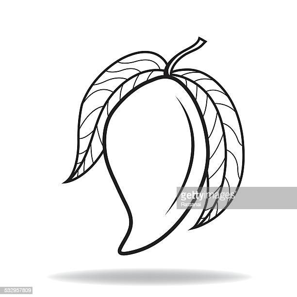 Line Art Mango : Mango stock illustrations and cartoons getty images