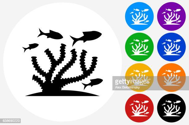 Marine Animals Icon on Flat Color Circle Buttons