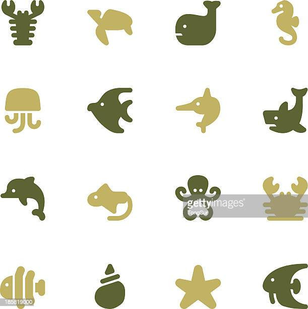 Marine Life Icons | set - Color Series