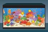 Marine reef saltwater aquarium with fish and corals. Vector illustration
