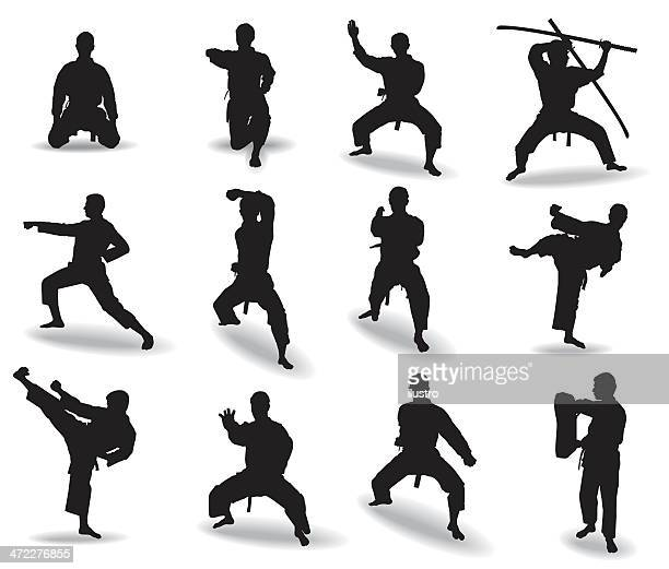 Illustrazioni e cartoni animati stock di karate getty images