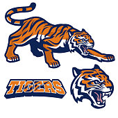 vector of mascot tiger crouching in set