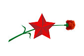 May 9 Russian holiday Great Victory day. Big red star and carnation. Symbol of victory Soviet Union over Nazi Germany in World War II. Vector illustration gift card banner