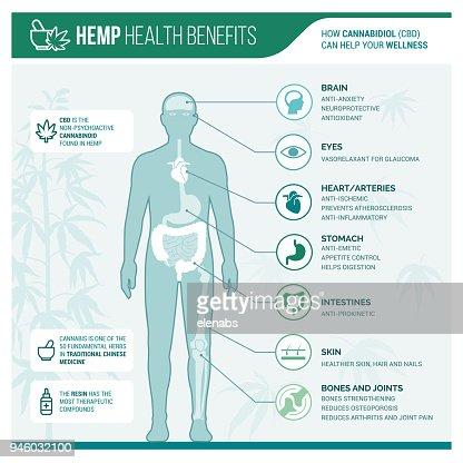 Medicinal hemp health benefits : stock vector