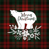 Merry Christmas greeting card, invitation. Hand drawn white polar bear with fir tree branches. Floral decoration with poinsettia and mistletoe, tartan checkered plaid, vector illustration background.