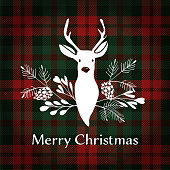 Merry Christmas greeting card, invitation. Reindeer with Christmas bouquet, floral decoration. Tartan checkered plaid, vector illustration background.
