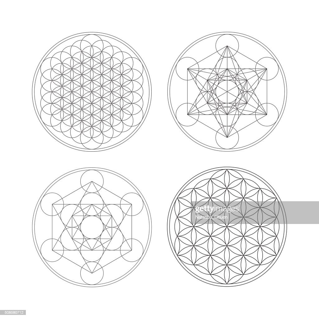 Metatrons Cube and Flower of life. : Vector Art