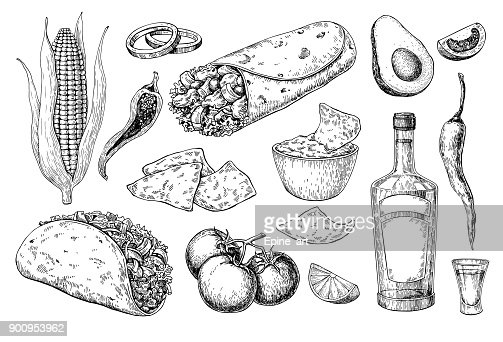 Mexican cuisines drawing. Traditional food and drink vector illustration : Vector Art