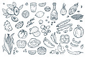 Mexico Vector set. Mexican Food - Hand drawn doodle Fresh Fruits, Vegetables, Tequila