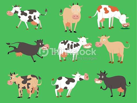 Toro De Vaca Vector De Leche De Búfalo Becerro Diferentes Vacas