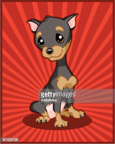 Miniature Pinscher Puppy : Vector Art