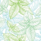 Mint seamless pattern. Summer background. Hand drawn vector illustration.