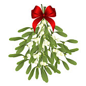 Mistletoe. Vector illustration of hanging mistletoe sprigs with red bow isolated on white background for Christmas cards and decorative design.