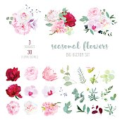 Pink rose, white and burgundy red peony, protea, violet orchid, hydrangea, campanula flowers and mix of seasonal plants and herbs big vector collection. All elements are isolated and editable.