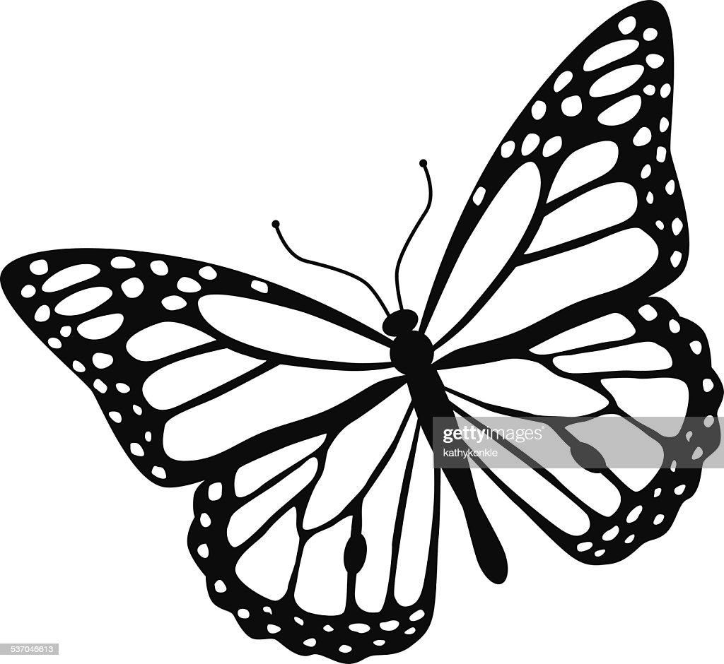 black and white butterfly drawing