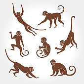 monkey, vector, silhouette, animal, illustration, graphic, primate, outline, wildlife, ape, isolated, symbol, collection, astrology, zodiac, art, sign, set, chimpanzee, year, decoration, new, icon, de