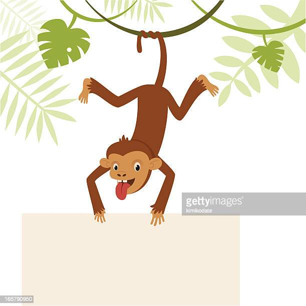 Monkey with banner