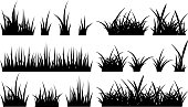 Monochrome illustration of grass. Vector black silhouettes nature grass field