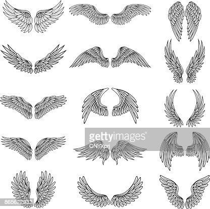 Monochrome illustrations set of different stylized wings for logos or labels design projects. Vector pictures set : stock vector