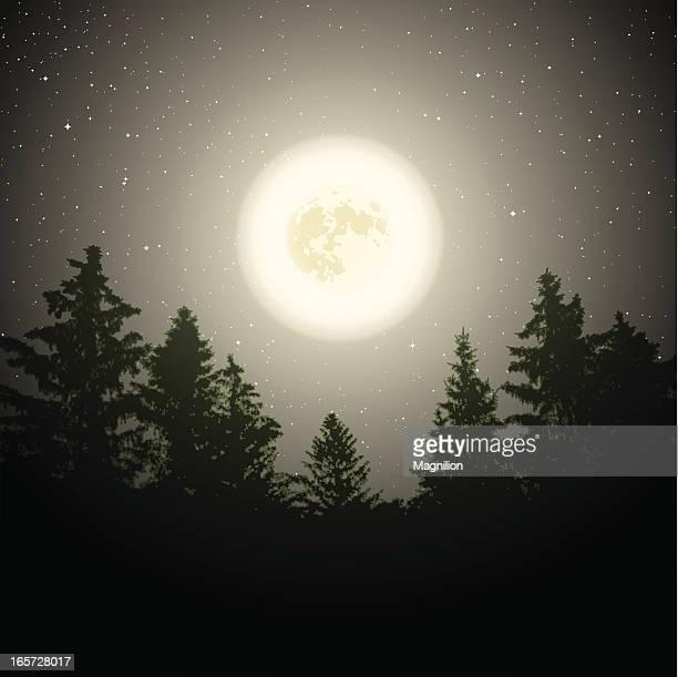 Lune sur les arbres