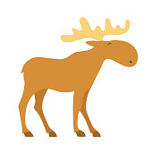Moose cartoon icon. Vector illustration