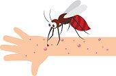 Mosquito bite.vector illustration.